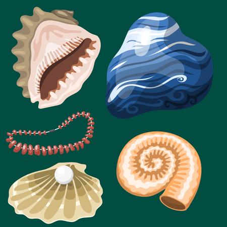 海海洋動物や貝殻のお土産は漫画ベクトル図です。スパイラル熱帯軟体動物ムール貝の装飾。エキゾチックなカタツムリ水族館美容ホタテ自然貝手  イラスト・ベクター素材