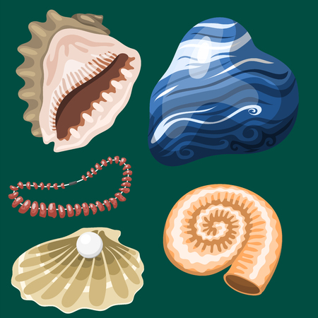Sea marine animals and shells souvenirs cartoon vector illustration. Spiral tropical mollusk mussel decoration. Exotic snail aquarium beauty scallop nature seashell hand drawn sketch.