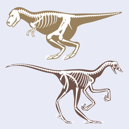 Dinosaurs skeletons silhouettes set fossil bone tyrannosaurus prehistoric animal and jurassic monster predator dino vector flat illustration.. Reptile extinct paleontology old bones.