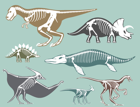 Dinosaurs skeletons silhouettes set fossil bone tyrannosaurus prehistoric animal dino bone vector flat illustration. Ilustrace