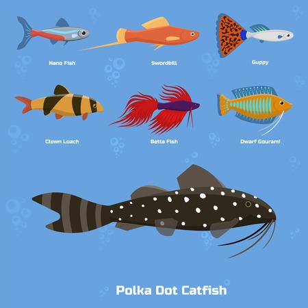 Exotic tropical aquarium fish Illustration
