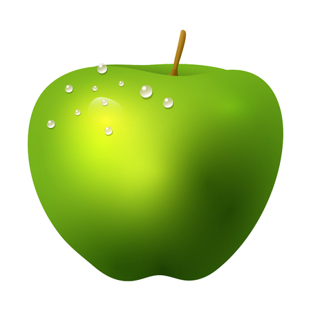 Green apple fruit realistic 3d healthy vegetarian sweet ripe vector illustration. Juicy nature piece agriculture gourmet ingredient tasty vegan food.