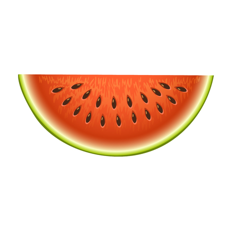 Ripe striped watermelon realistic juicy healthy vector illustration. Slice green isolated ripe melon. Vegetarian diet freshness dessert. Water refreshment delicious fruit. Imagens - 87054763