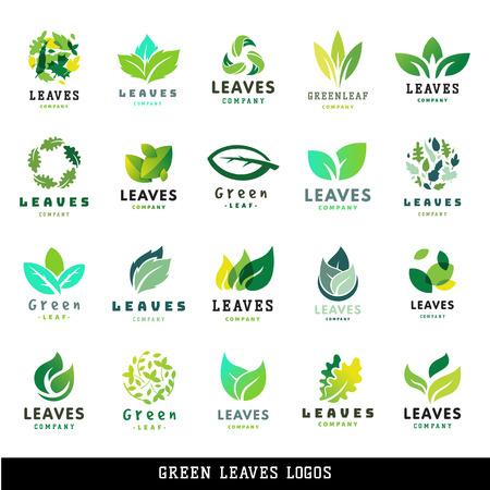 緑の葉エコ設計要素アイコン友好的な性質エレガンス記号および装飾 floranatural 要素生態有機ベクトル イラスト。抽象的なバイオ葉装飾的な植物。