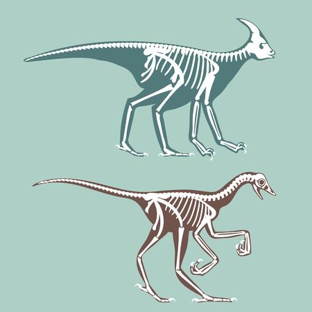 Dinosaurs skeletons silhouettes set fossil bone tyrannosaurus prehistoric animal dino bone vector flat illustration. Illustration