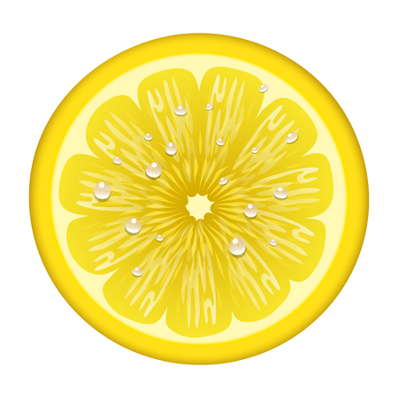 Yellow lemon fruits svector illustration vegetarian diet cytrus freshness tropical slice Illustration