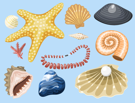 Zee zee dieren en shells souvenirs cartoon vector illustratie spiraal tropische weekdier mossel decoratie Stock Illustratie