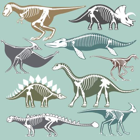 Dinosaurs skeletons silhouettes set fossil bone tyrannosaurus prehistoric animal and jurassic monster predator dino vector flat illustration.. Reptile extinct paleontology old bones.