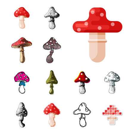 Set of different mushrooms icon. Stock Vector - 87280922