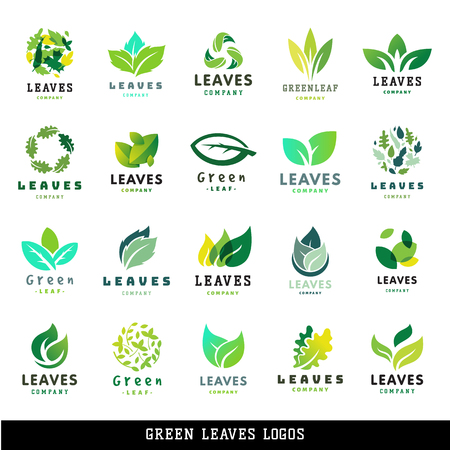 Green leaf eco design friendly nature elegance label natural element ecology organic vector illustration.