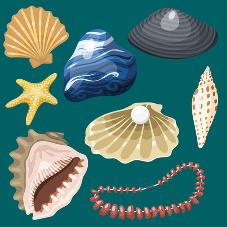 Sea marine animals and shells souvenirs. Illustration