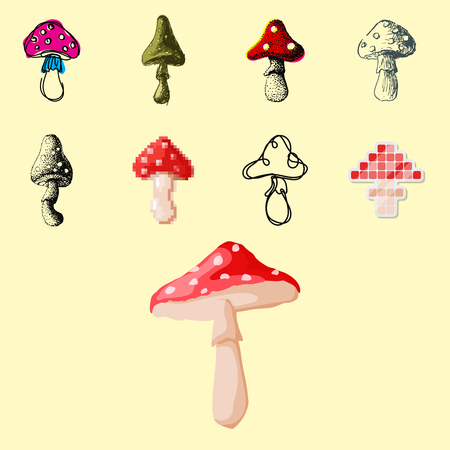 poison sign: Amanita fly agaric toadstool, mushrooms fungus in different art style design illustration