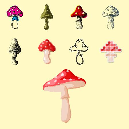 Mushrooms fungus in different art style design illustration. Illustration