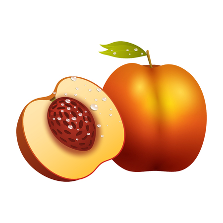 Peach fruit, slice realistic, 3d healthy vegetarian, sweet ripe vector illustration