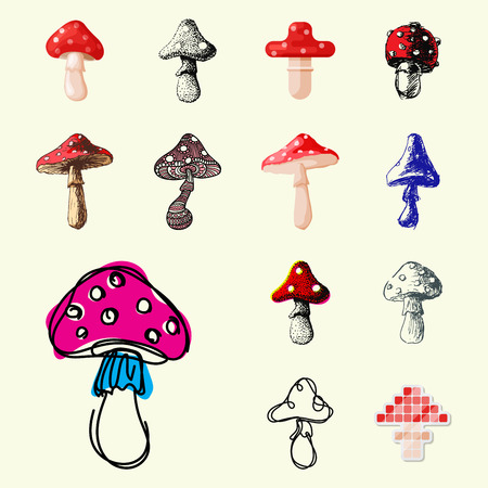 Amanita fly agaric toadstool mushrooms fungus different art style design vector illustration red hat on white background. Harvest cooking healthy vegetarian plant forest illustration.