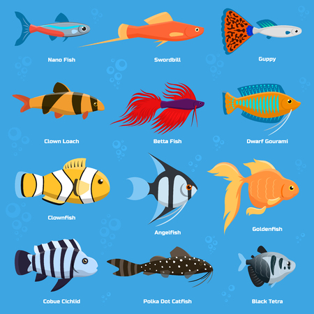 Set of aquarium and ocean fish breeds icon. Illustration