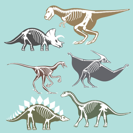 Dinosaurs skeletons silhouettes set fossil bone tyrannosaurus prehistoric animal and jurassic monster predator dino vector flat illustration.