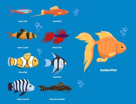 エキゾチックな熱帯水族館魚の異なる色水中海種水生自然フラット ベクトル イラスト。
