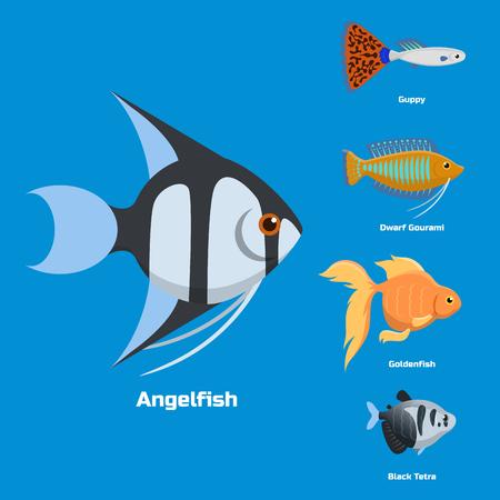 De exotische tropische van de verschillende kleuren onderwater oceaansoort van aquariumvissen aquatische aard vlakke vectorillustratie.