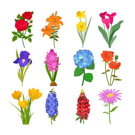 아름다운 수채화 꽃