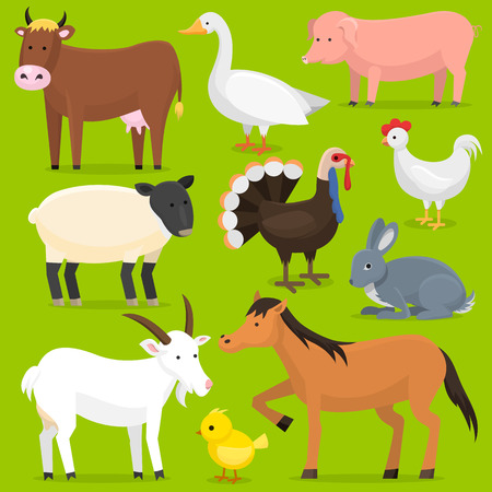 Farm vector animals, birds farmland set illustration. Horse, pig, cow. Cartoon mammal comic farmers animals design agriculture isolated on white nature background.