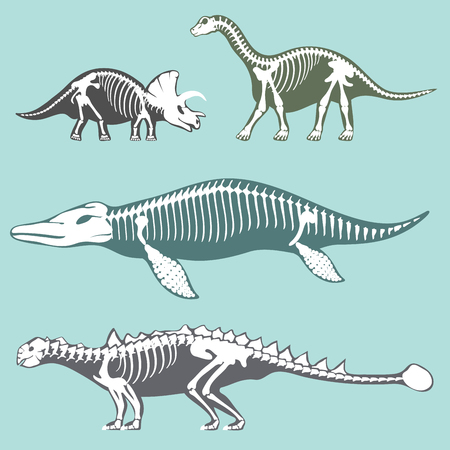 Dinosaurs skeletons silhouettes set fossil bone tyrannosaurus prehistoric animal and jurassic monster predator dino vector flat illustration.. Reptile extinct paleontology old bones. Reklamní fotografie - 88050993