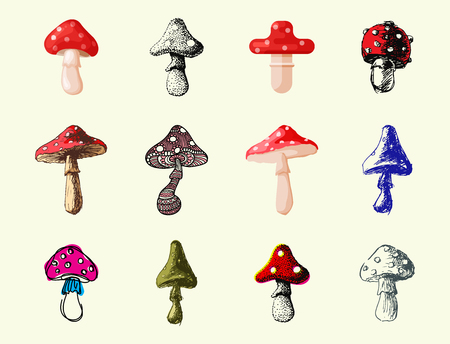Mushrooms different art style design