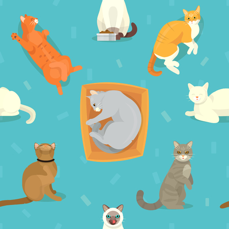 Cat breeds vector cute kitty pet cartoon cute sleep and play animal cattish character set catlike illustration seamless pattern background Imagens