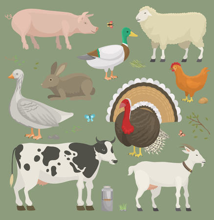 Different home farm vector animals and birds like cow, sheep, pig, duck farmland set illustration Çizim