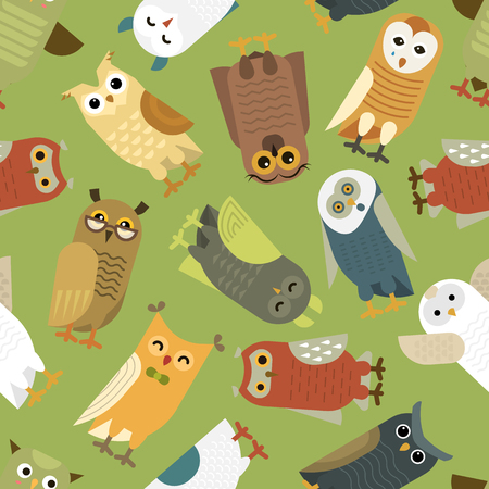Owls vector cartoon cute bird set. Owlet character kids animal baby art for children. Owlish collection on seamless pattern background.
