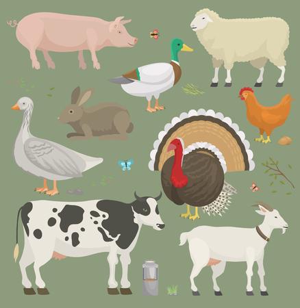 Los diversos animales y pájaros del vector de la granja casera tienen gusto de las tierras de labrantío de la vaca, de las ovejas, del cerdo, del pato fijaron la ilustración Foto de archivo - 92168363