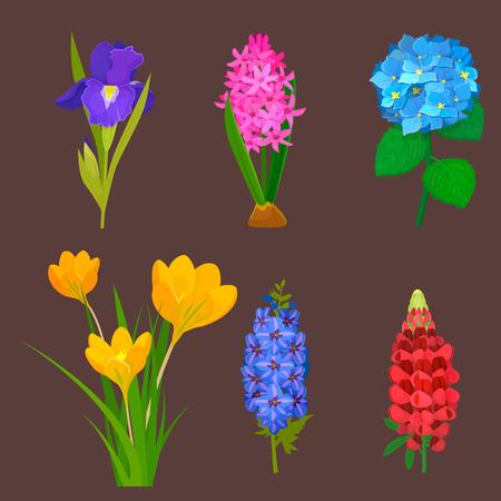 Beautiful vector flower bouquet design decoration nature design.