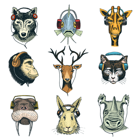 Animal head in headphones vector animalistic character in earphones or headset listening to music illustration set of cartoon wild dj in headgear or earbuds isolated on white background