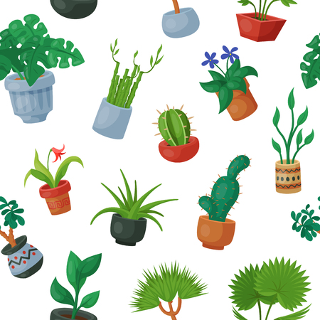 Home plants in flowerpots vector potted flowery houseplants for interior decoration botanic collection floral cactuses in pots and flowers botanical garden illustration seamless pattern background Illustration