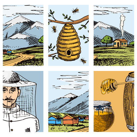 Apiary farm vector cards hand drawn vintage honey making farmer beekeeper illustration nature product by bee