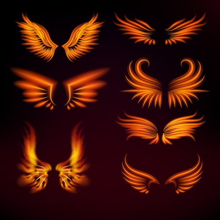 Bird fiery wings vector set