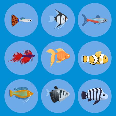 エキゾチックな熱帯水族館の魚のベクトル図