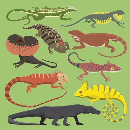 爬虫類セットイラスト  イラスト・ベクター素材