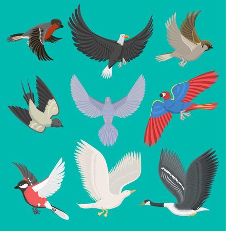 Vliegende vogels vector illustratie cartoon schattige fauna veer vlucht dierlijke silhouet lente vrijheid natuurlijke concept. Dieren in het wild tekening geïsoleerde vlieg vogels met vleugels