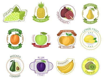 Fruit label vector fruity apple, orange, banana juice package and fruitful mango sign or juicy berry stickers logotype set illustration isolated on white background
