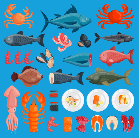 Vector sea food cuisine fresh fish and shrimp, crab, squid illustration set design flat fish and crab food oyster seafood shrimp menu ctopus animal shellfish