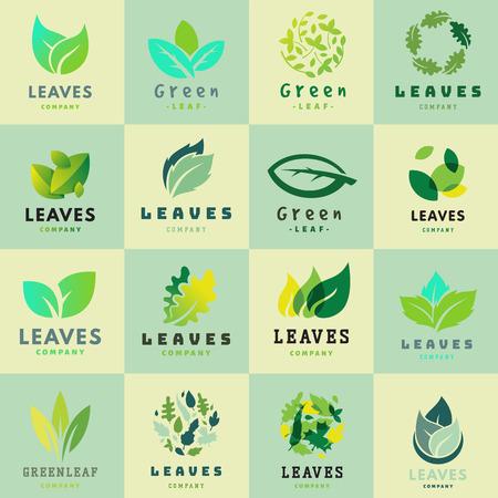Green leaf Eco design symbol and natural element ecology organic vector illustration.