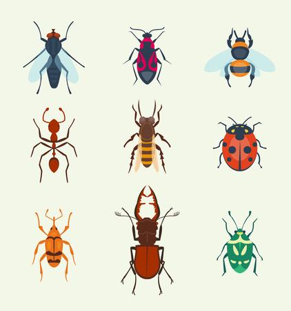 Insectes icons set Banque d'images - 97425651