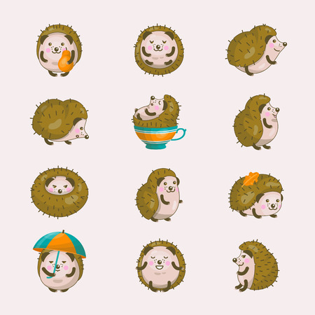 Hedgehog cartoon icon set