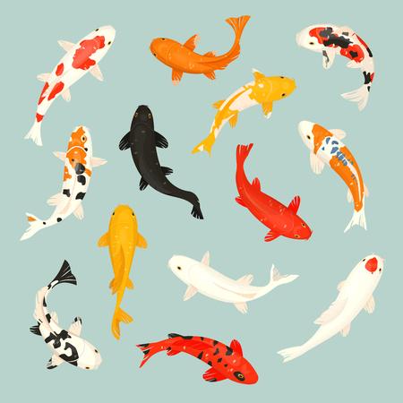 Koi fish vector illustration carpe japonaise et koi oriental coloré en Asie ensemble de poisson rouge chinois et fond isolé de la pêche traditionnelle