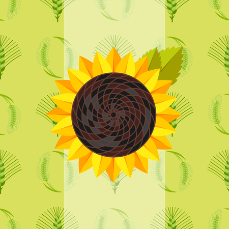 Cereal seeds grain product sunflower vector backround templates natural plant muesli grainy organic porridge flour illustration.