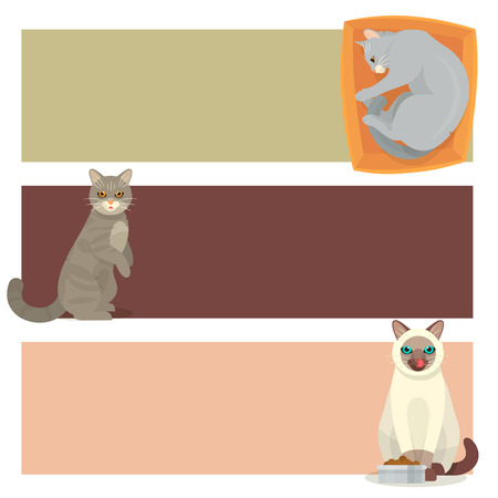 Different cat banners collection