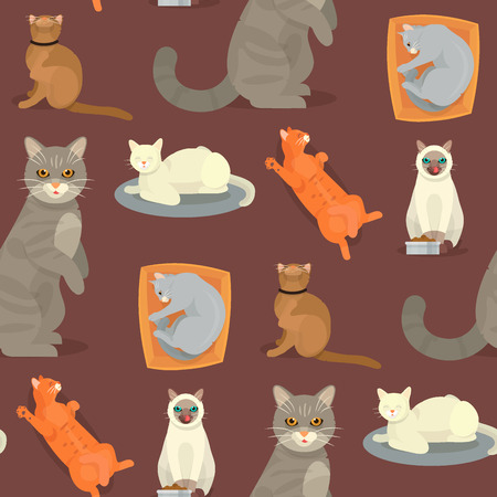 Cat breeds cute kitty pet cartoon cute animal character seamless pattern background illustration. Mammal human friend cat breed animals. Cats paws. Catlike movement and feline manner.