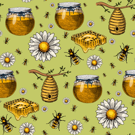 Apiary bee vector chamomile hand drawn vintage honey making farmer beekeeper illustration nature product seamless pattern background.