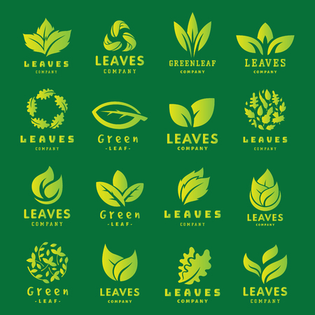 Green leaf eco design friendly nature elegance symbol and natural element ecology organic vector illustration. Illustration